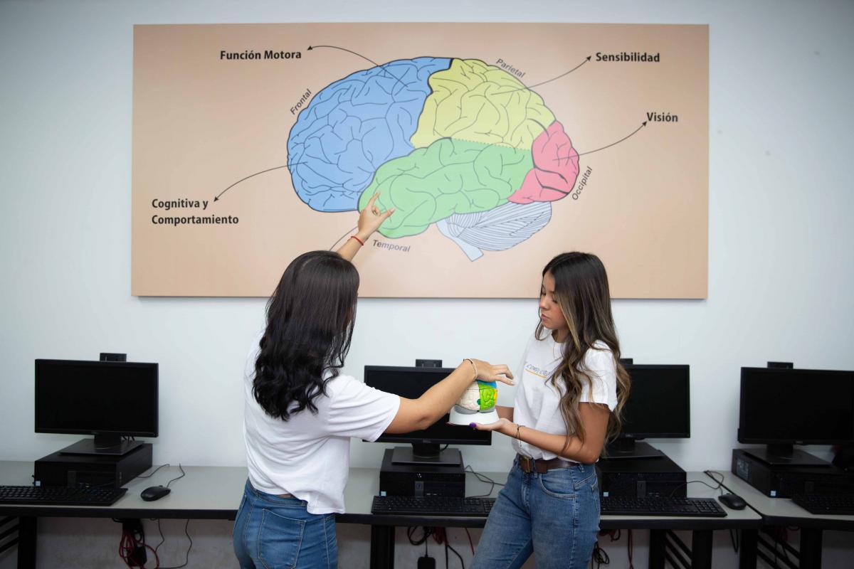 Renovación Acreditación Psicologia