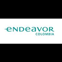 image-logo-endeavor